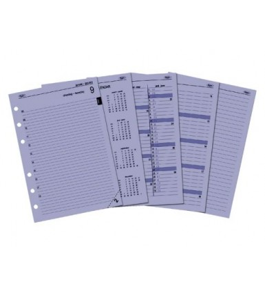 Calendarium 2021 Executive/A5 Day per page