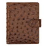 Struzzo brown