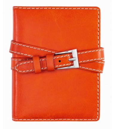 Succes Organiser Double Belt orange Junior